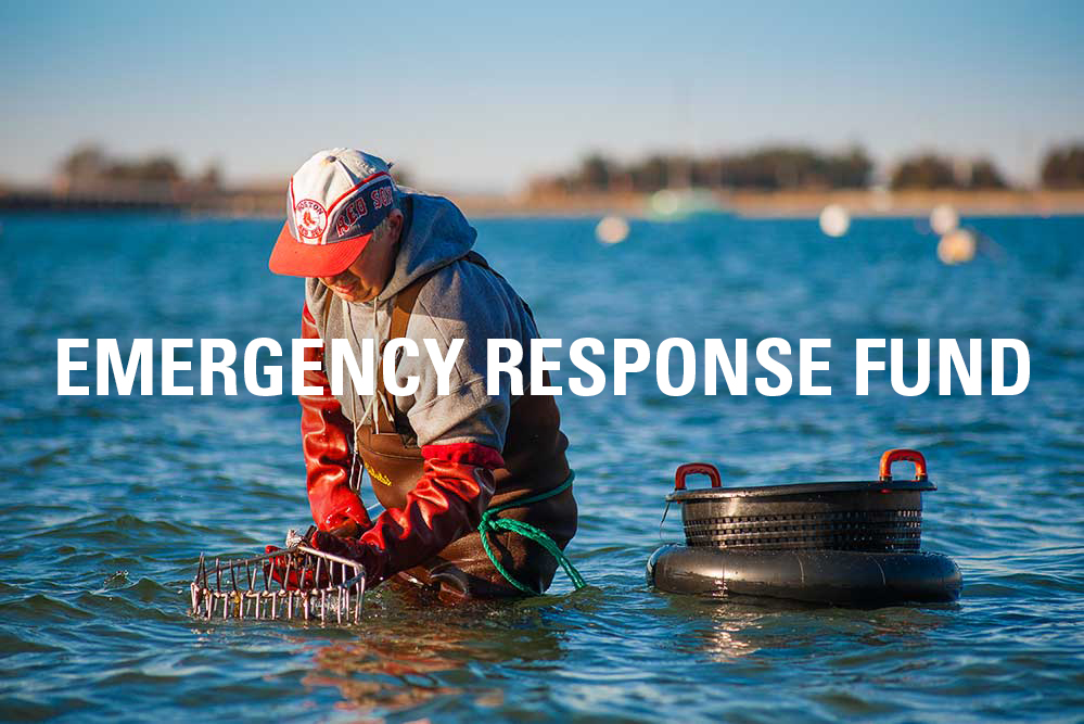 Emergency Response Fund launched in the wake of the COVID-19 pandemic