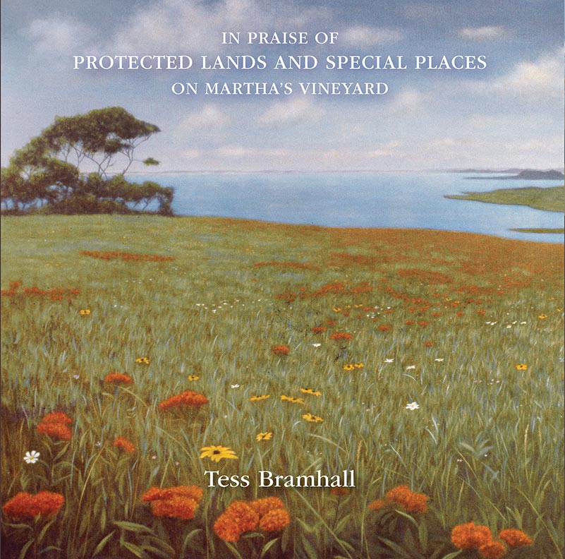 In Praise of Protected Lands and Special places on Martha's Vineyard